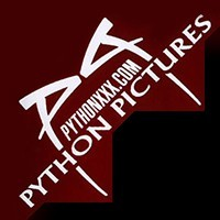 Python Pictures Profile Picture
