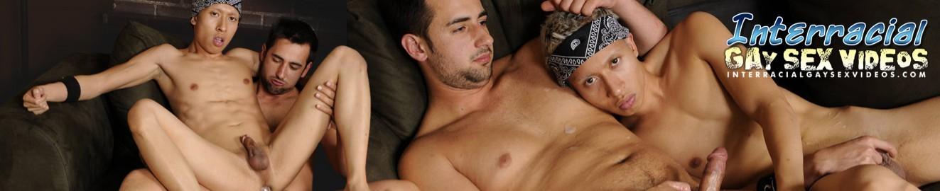 Interracial Gay Sex Videos cover