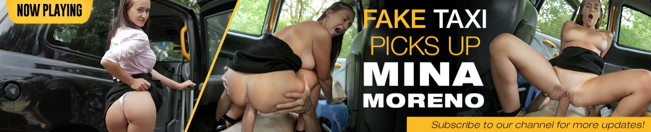 Fake Taxi cover