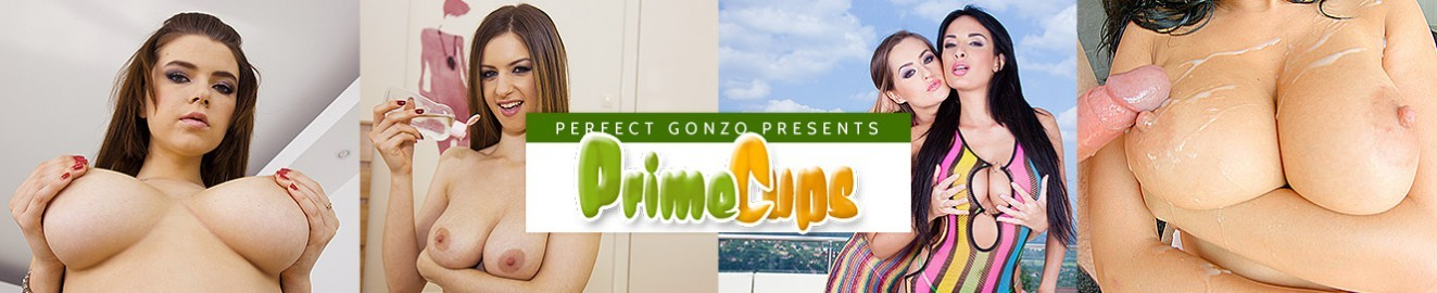 Prime Cups cover