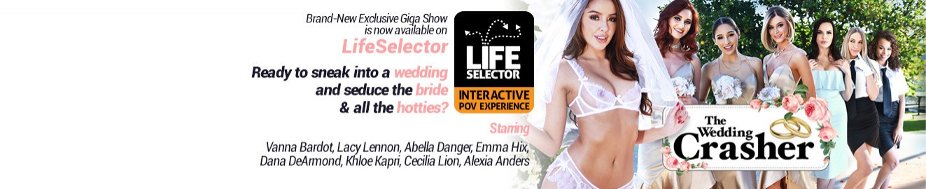 Life Selector cover