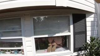Must Watch!!! Sexy wet milf by mailwoman having a dildo orgasm!! :)