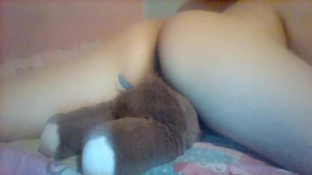 Humping Teddy Bär Orgasmus