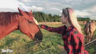 take my horse, public and fast pov bj on a sunny pasture by redfoxred fox – teen porn