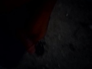Dick flash on the street