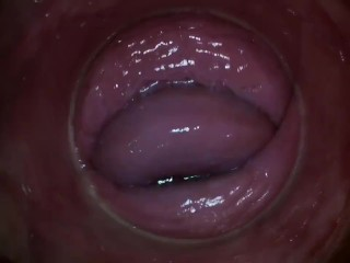 PJGIRLS - Camera deep inside Paula Shy\'s vagina (Full HD Pussy Cam)