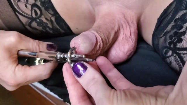 Piercing penis video Category:Stretched Prince