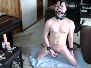 Humiliated cam pig cums with nose hook