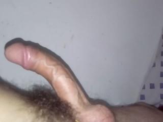 Hard cock throbbing pulsating big veins precum