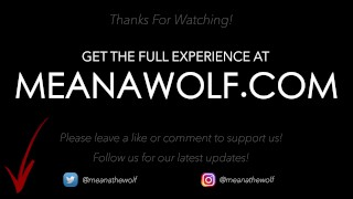 A Quick Sale - Meana Wolf