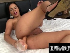 Dream Tranny - Brunette Tgirls Playing With Dildos Compilation