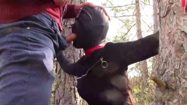 Outdoor sex in the wood. Wearing sexy clothes and high heels, bound, throated and fucked